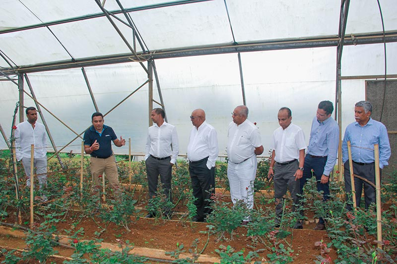 2.Priyanga Dematawa explaining the process inside of a cultivation tunnel to the DIMO Management