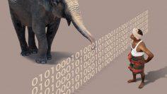 Elephant-Decoder
